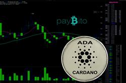 Crypto Change, PayBito Termasuk ADA Cardano ke Daftar Koinnya