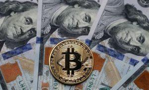 Cryptocurrency akan memberikan 'pendapatan dasar common' jika California memisahkan diri dari AS | Dunia | Berita