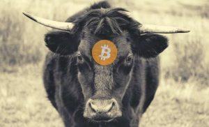 Bullish untuk Bitcoin? Sentimen Twitter dan Setoran BTC di Bursa Menurun