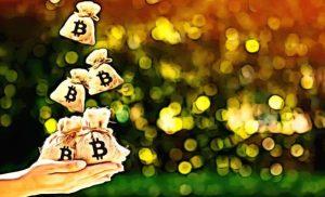 Kisah Penipuan Cryptocurrency Romantis