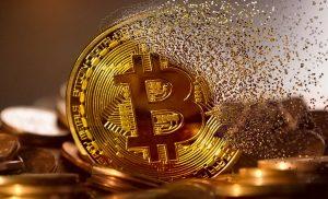 Pemerintah, perusahaan keuangan tidak mempercayai crypto