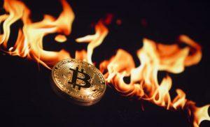 Bitcoin (BTC), harga cryptocurrency naik saat mendekati separuh